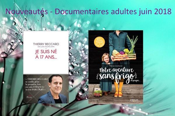 Nouveautés - Documentaires adultes juin 2018