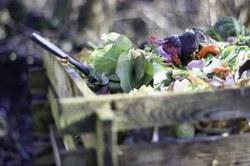 Tous au compost - Recrutement de guides composteurs-pailleurs