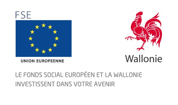 logo FSE+wallonie.jpg