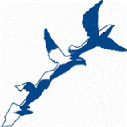 Icone Oiseau