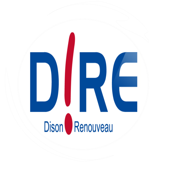 Logo D!RE.png
