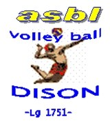 Volley Ball Dison